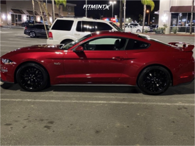 2020 Ford Mustang - 19x9.5 33mm - RTR Tech 7 - Stock Suspension - 255/45R19