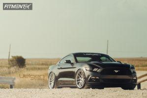 2015 Ford Mustang - 20x10.5 45mm - Velgen VMB6 - Lowered Adj Coil Overs - 275/35R20